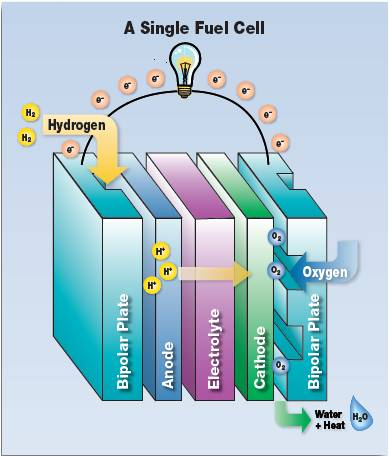 thesis fuel cell membrane exchange stack A thesis submitted in partial response of a low pressure proton exchange membrane (pem) fuel cell stack to 7 figure 51a the gencore® 5b48 fuel cell.