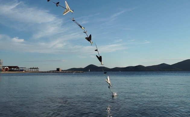 aerial_aquatic_mav.jpg